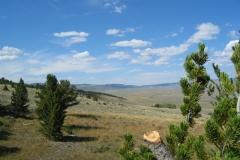 2006-Colorado0017