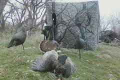 TURKEY-2-2013